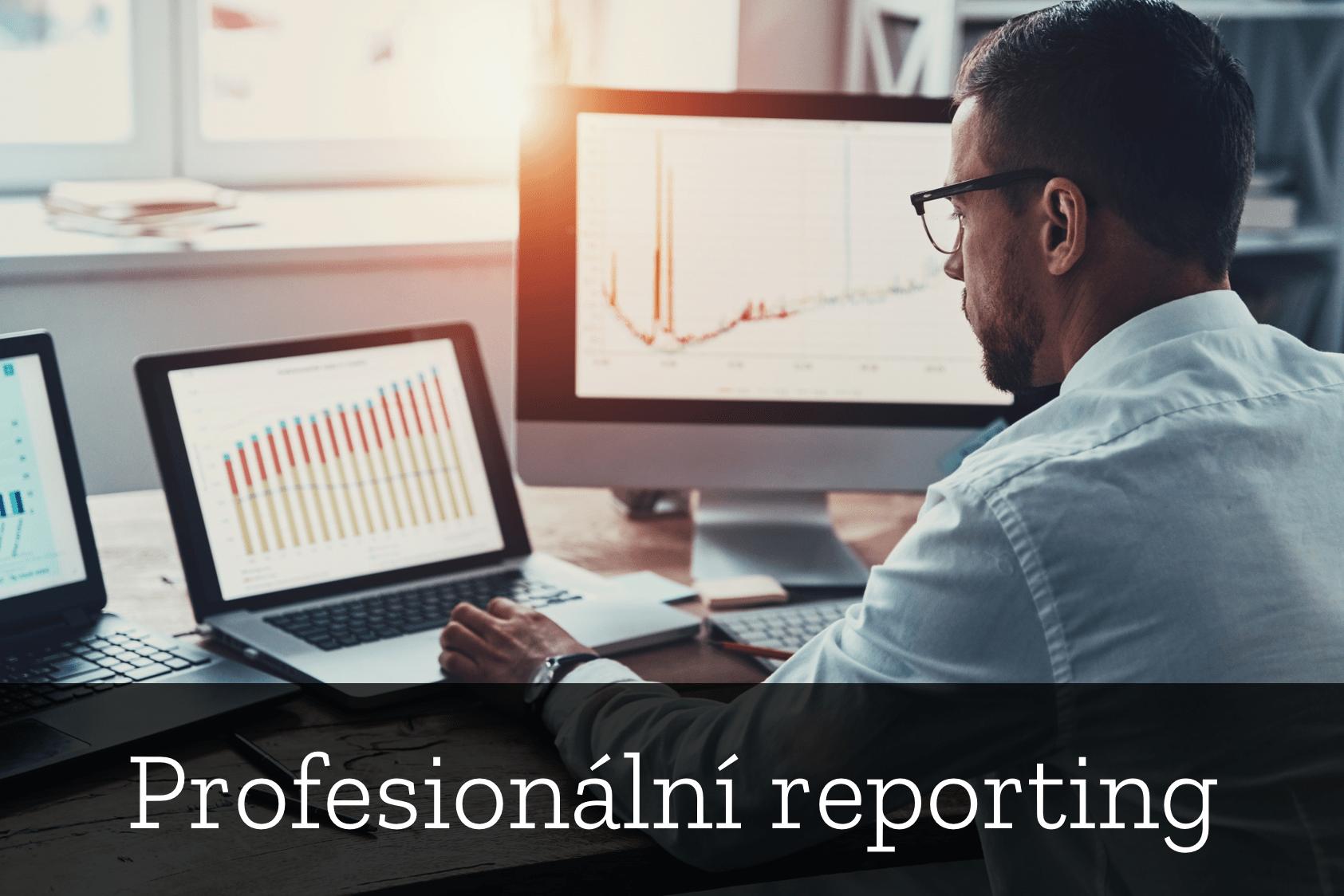 Profesionální reporting
